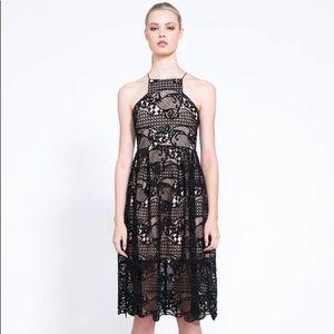 NWOT Elliatt In The Air Nude Black Lace Midi Dress